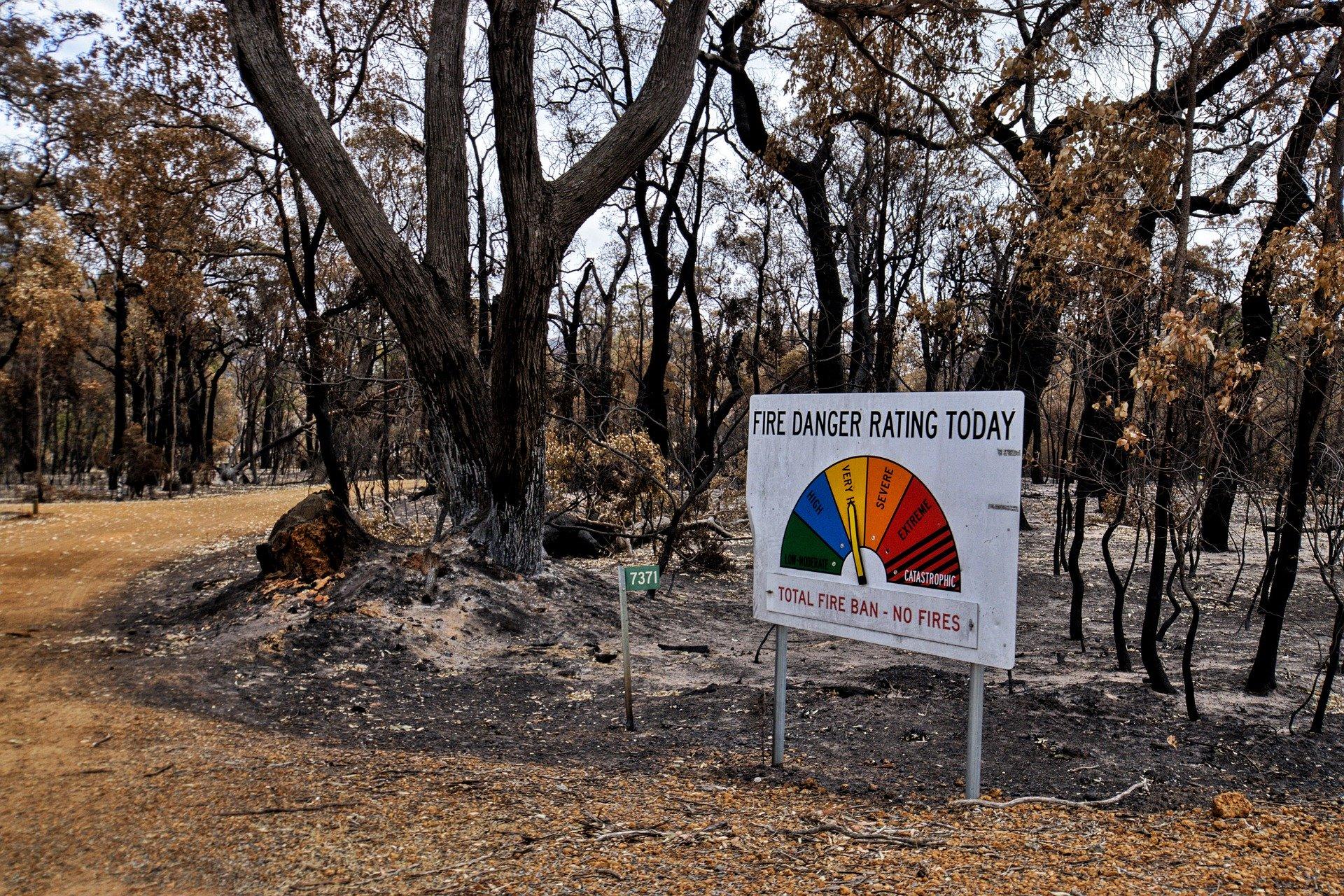 bushfire-relief-australia